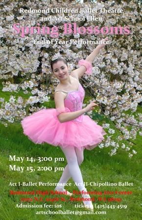 Spring Blossom 2011 2